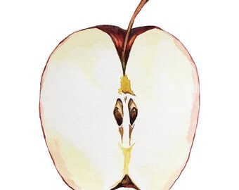 Apple Art Print | Apple Illustration | Apple Watercolor Painting | Farmhouse Decor | Kitchen Decor | Kitchen Art | Food Illustration