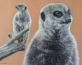 Meerkat Study (oils, 2016)