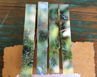 Leaves & Branches on Peg Fridge Magnets (one-of-a-kind)