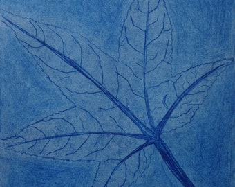 Light Blue Leaf Drypoint Etching