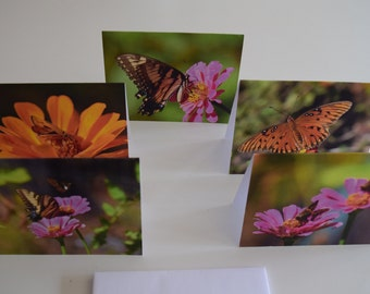 Photo Notecards - The Butterfly Collection