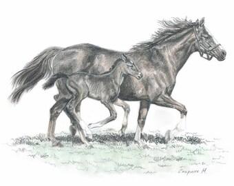 Mare with foal - Original Graphite Pencil Drawing- Horses -Foal-Original Horse Drawing
