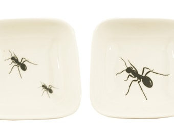 Little big and little ants dishes