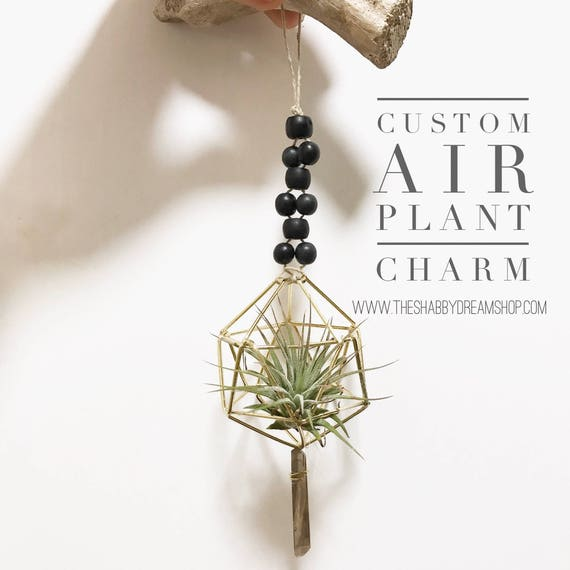 One of a kind Air plant charm