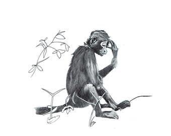 Monkey Print - digital print of an illustration of a tired monkey