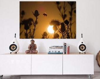 EP0032 Bumblebee Sunset - wall decal, photograph, decorative print