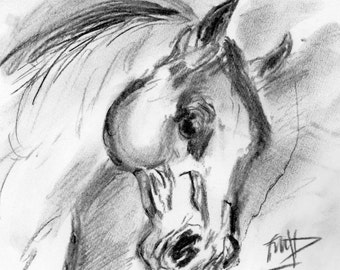 Horse's head, Horse's Head Charcoal Drawing, Horse's Head Fine Art Print, Equine Portrait, Horse Lover's gift, Horse Lover's Christmas gift