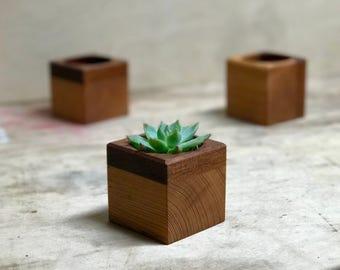 Reclaimed Succulent Planter