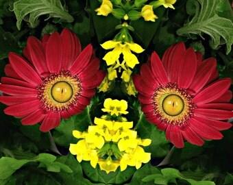 Orange Mum Flower Fairy
