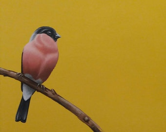 Original Bird Painting, Bullfinch (2014)