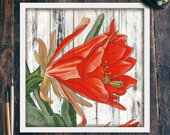 Christmas Cactus Printable Wall Art, Rustic Wall Decor Beach, Red Flower, Large Square Home Decor, Instant Digital Download (#4003c)