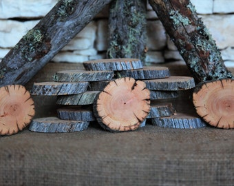 "12 Ancient Douglas Fir Tree Slices - 3"" to 4"""