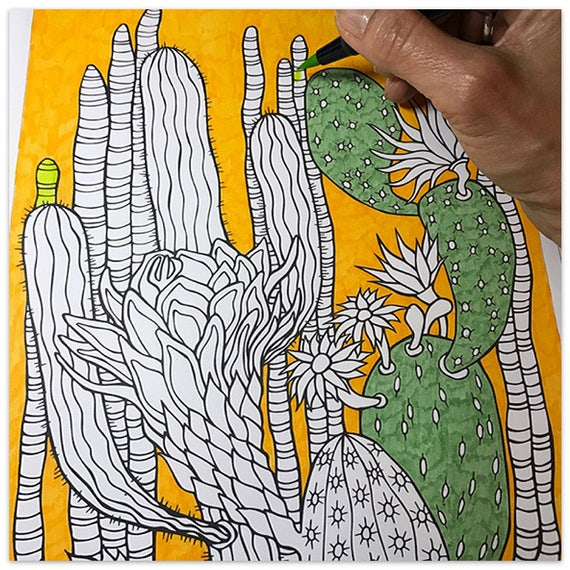 Printable Cactus Corner Colouring Page
