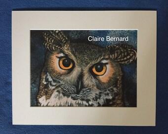 Print from an original watercolour - Owl - fine art
