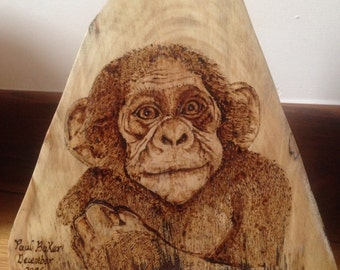 Cheeky little monkey pyrography