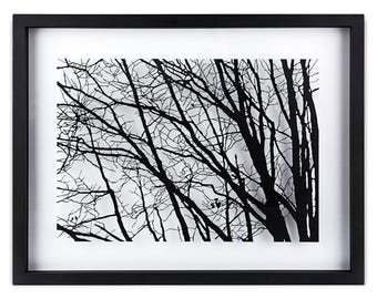 Paper cut art, Branches, Wall decor, Framed, Hand made