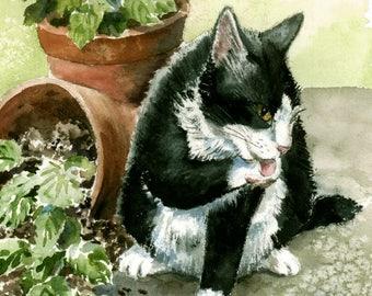 Cat Nipped