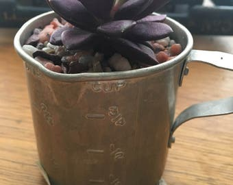 Succulent Tin Measuring Cup