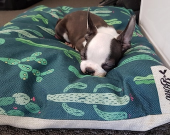 Cactus Garden – Medium Dog Cushion Bed