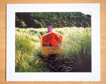 Contrasting Colors- High Quality Mounted Photographs 12x10 inches from Ireland