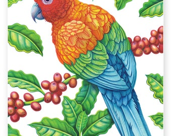 Coffee Amazon Parrot A4 digital PDF download