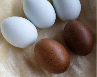 Blue Eggs - Set of 4