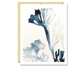 Milkweed Shadow Notecard // Everyday Card // Modern Card // Blank Notecard // Plant Card // NW Artist // Rachel Austin Card