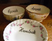 3 Poisons hand painted vintage bowls and one dish recycled arsenic cyanide hemlock macabre decor display