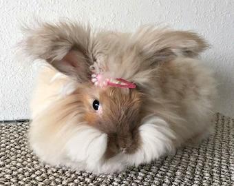 Fawn Angora Bunny Fleece, Unwashed Angora Wool, Angora Fur, Rabbit Fiber, 3 ounces