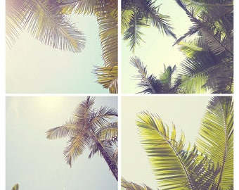Palm tree photography set, coastal decor, coastal wall art, palm tree decor, tropical decor, set of 4 photographs, nature photography