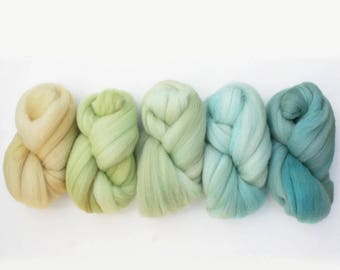 Ombre Gradient BFL Combed Top Spinning Fiber 5 oz total, Beachcomber