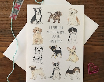 Puppy Card. Cheer Up. Get well Card. Just Because. Puppy lover. Dog lover. Friendship card. Get better soon. Depression Card. Blank Card