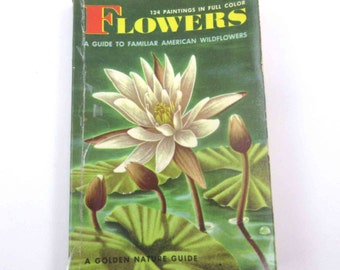 A Golden Nature Guide to Familiar American Wildflowers Flowers Vintage 1950s Guide Book with Fabulous Illustrations