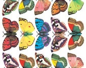 Self Adhesive Butterfly Stickers 1 Sheet Colorful Scrapbooking Stickers  Number C68