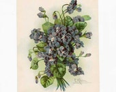 Antique Edwardian 1905 Vintage Catherine Klein Violets Bouquet Illustration, Bookplate  Print for Framing, Original Flowers Print