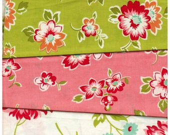 Scrumptious 10 Fat Quarters Bundle -  Moda Bonnie and Camille - See All Images Out Of Print Hard to Find