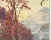 A. Young. On the Edge of the Grampians TUCK Oilette POSTCARD NO. 7338, Scene from Australia