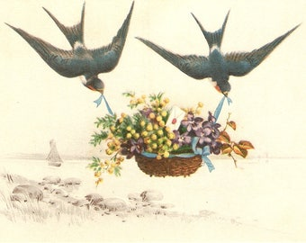 Swallow birds carrying basket of flower antique Greetings postcard