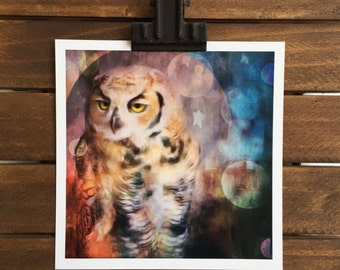 Great-horned Owl Photographic Print