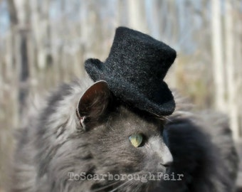 Sir Purrington - Cat Top Hat - Cat Wedding Attire - Wedding Hat - Artistocrat Hat-Squire Top Hat-Topper Cat Hat Cylinder Hat, Stove Pipe Hat