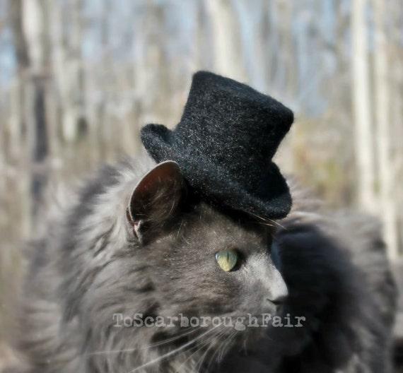 Sir purrington cat top hat cat wedding attire wedding like this item junglespirit Images