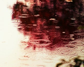"""Water Photography, Rain, Pond, Autumn, Red, Reflection, Raindrops, 6x9 or 8x12. """"October Rain""""."""