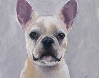 """White French, Frenchie, Bulldog, Pink Ears, Beige on White Background, 20"""" x 20"""" Original Painting by Clair Hartmann"""