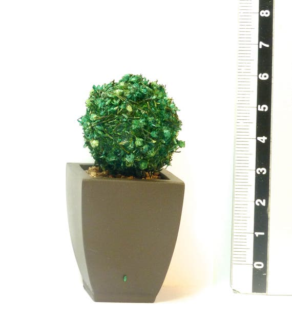 1 TOPIARY TREE Square brown planter Dolls House Miniature Plant Handmade 12th