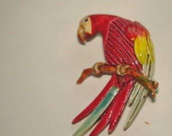 Red Parrots  Bird Multi Tone Brooch