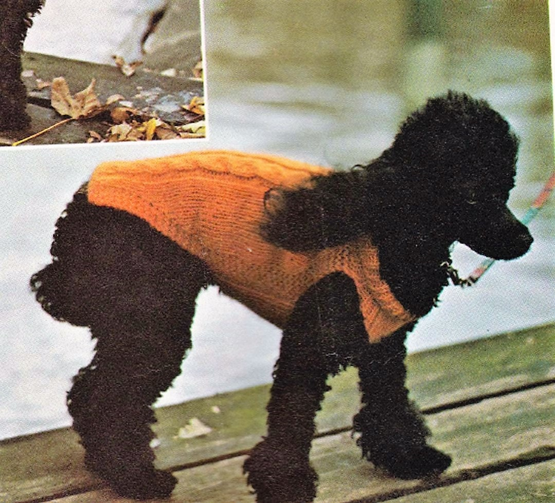 Vintage Dog Coat Knitting Pattern : SALE Vintage knitting pattern for Dog Coat/Sweater Cable