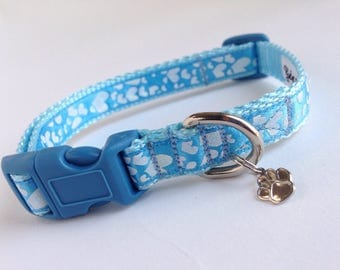 Small Doggie loves blue Dog Collar