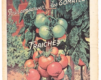 Vintage French gardening magazine with a tomato print as the front cover theme