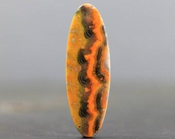 Bumblebee Jasper Cabochon Volcanic Stone Natural Yellow Black Orange and Grey Gemstone (20600)