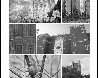 University Of Richmond VA Virginia Collage  - Black and White - Vintage Sepia - Color - Fine Art Photography Print  by Dave Lynch